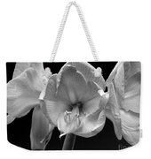 Three Amaryllis  Black And White Print Weekender Tote Bag