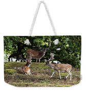 Three Bucks Weekender Tote Bag