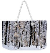 Three Creeks Conservation Area - Winter Weekender Tote Bag