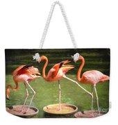 Three Flamingos Weekender Tote Bag