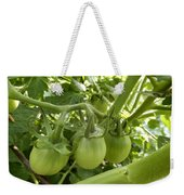 Three In A Row Green Tomatoes Weekender Tote Bag