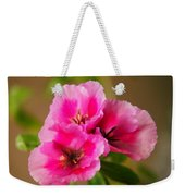 Three Little Beauties Weekender Tote Bag