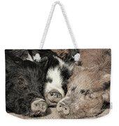 Three Little Pigs Weekender Tote Bag