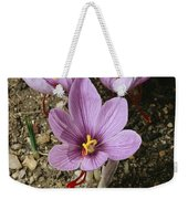Three Lovely Saffron Crocus Blossoms Weekender Tote Bag