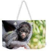 Three Month Old Spider Monkey Weekender Tote Bag