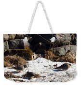 Three Mourning Doves Weekender Tote Bag
