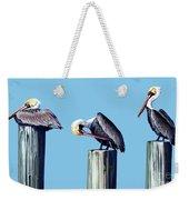Three Pelicans Weekender Tote Bag
