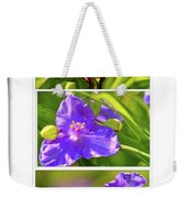 Three Photos For The Price Of One  Weekender Tote Bag