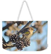 Three Pine Cones And A Little Bird Weekender Tote Bag