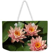 Three Pink Water Lilies Weekender Tote Bag