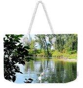 Three Toronto Swans  Weekender Tote Bag