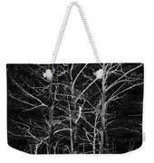 Three Trees In Black And White Weekender Tote Bag