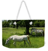 Three White Lipizzan Horses Grazing In A Field At The Lipica Stu Weekender Tote Bag