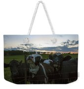 Three Wisconsin Maidens Weekender Tote Bag
