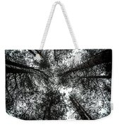 Through The Canopy Weekender Tote Bag by Nick Bywater