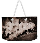 Through The Fence Weekender Tote Bag by Diane Reed
