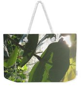 Through The Sea Grape Leaves Weekender Tote Bag