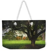 Throw Your Arms Around The World Weekender Tote Bag