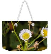 Thumbnail Sized Pretties Weekender Tote Bag