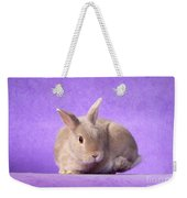 Thump Gorgeous Dwarf Rabbit Stamps His Foot  Weekender Tote Bag