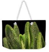 Thyme Leaves Weekender Tote Bag
