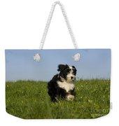 Tibetan Terrier Puppy Weekender Tote Bag