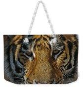 Tiger 5 Posterized Weekender Tote Bag