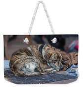 Tiger Dog And The Buskers Weekender Tote Bag