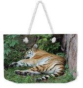 Tiger- Lincoln Park Zoo Weekender Tote Bag