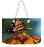 Tiger Swallowtail - 3 Weekender Tote Bag