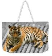 Tigers Look Weekender Tote Bag