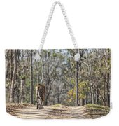 Tigress Walking Along A Track In Sal Forest Pench Tiger Reserve India Weekender Tote Bag