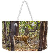 Tigress Walking Through Sal Forest In Pench Tiger Reserve  India Weekender Tote Bag