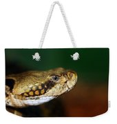 Timber Rattler Head On Weekender Tote Bag