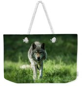 Timber Wolf Picture - Tw69 Weekender Tote Bag