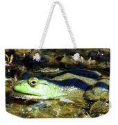 Time To Drain The Swamp Weekender Tote Bag
