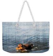 Time To Fetch Weekender Tote Bag by Joan  Minchak