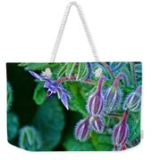 Tiny Blue Flower On A Bush At Pilgrim Place In Claremont-california  Weekender Tote Bag