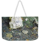 Tiny Fish In The Clear Water Weekender Tote Bag