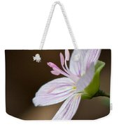 Tiny Spring Beauty Weekender Tote Bag