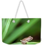 Tiny Tree Frog 01110 Weekender Tote Bag