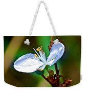 Tiny White Wildflower In Vicente Perez Rosales National Park Near Puerto Montt-chile  Weekender Tote Bag