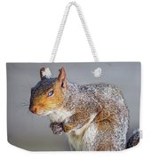 Tired Squirrel And Fly Weekender Tote Bag