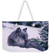 T.kitchin, 19552c Gray Wolf, Winter Weekender Tote Bag