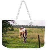 Tobiano Horse In Field Weekender Tote Bag