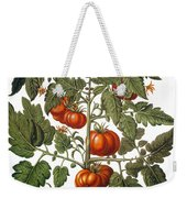 Tomato & Watermelon 1613 Weekender Tote Bag