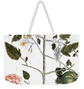 Tomato Plant, 1735 Weekender Tote Bag