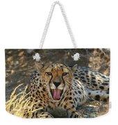 Tongue And Cheek Cheetah Weekender Tote Bag