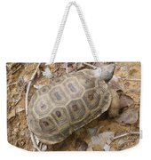 Tortoise  Weekender Tote Bag