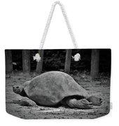 Tortoise Relaxing Weekender Tote Bag